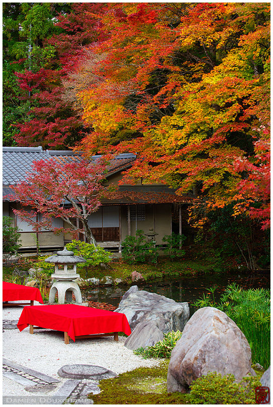 Tea house and autumn colors