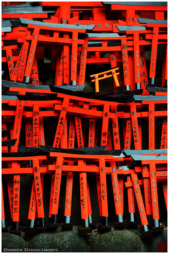 Small torii as votive offerings (Fushimi Inari shrine 伏見稲荷大社)