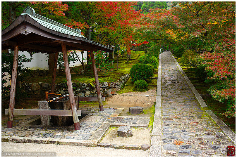Entrance of SHuon-an temple in autumn