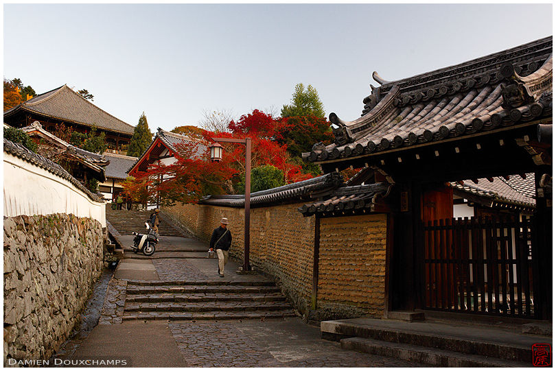 Old street leading to Nigatsu-do temple