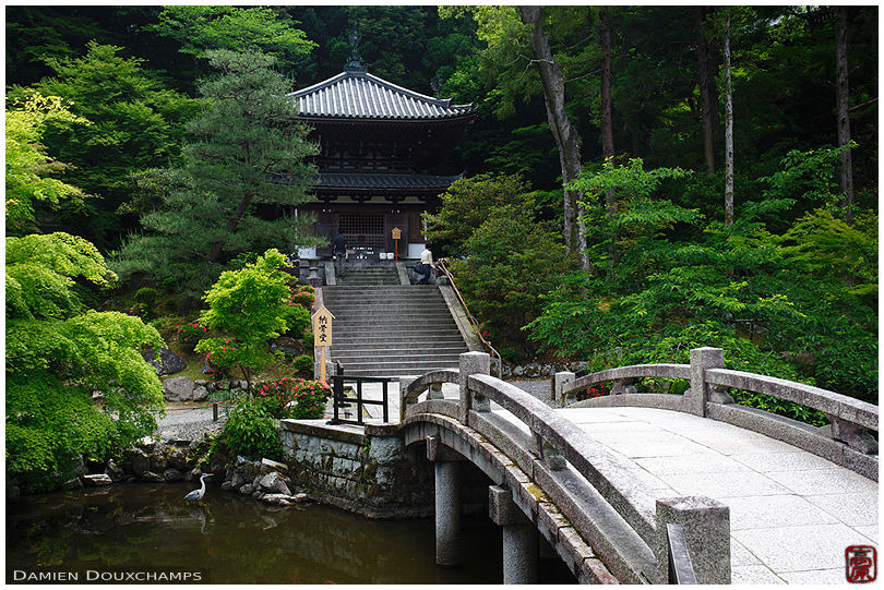 Chion-in (知恩院)