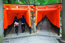 Twin paths under torii (Fushimi Inari shrine 伏見稲荷大社)