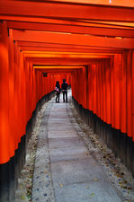 Young couple dating in torii covered path (Fushimi Inari shrine 伏見稲荷大社)