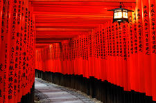 Lantern in torii covered path (Fushimi Inari shrine 伏見稲荷大社)