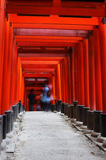 Ghosts among torii (Fushimi Inari shrine 伏見稲荷大社)