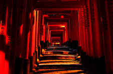 Climbing path under torii at night (Fushimi Inari shrine 伏見稲荷大社)