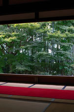 Window on bamboo forest and maple tree from meditation hall, Hosen-in (宝泉院)