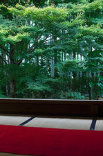 Bamboo forest and maple tree from meditation hall, Hosen-in (宝泉院)