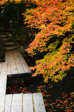 Wooden bridge across pon in zen garden (Tenja-an 天授庵)