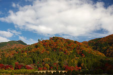 Autumn colors on Kyoto hills