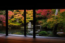 Meditation hall and garden in autumn (Renge-ji 蓮華寺)
