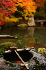 Water basin with bamboo ladle in autumn (Renge-ji 蓮華寺)