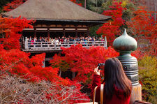 Photographing the autumn colors in Kiyomizu-dera (清水寺)