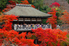 Autumn foliage around Okuno-in (奥の院) temple in Kiyomizu-dera (清水寺)