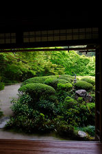 View from the study in spring, Shisen-do temple
