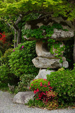 Ivy covered stone lantern