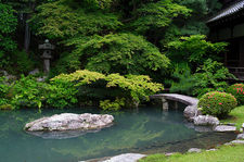 Pond with stone lantern and bridge, Shoren-in temple