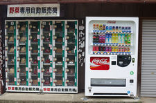 A vending machine for vegetables in Kyoto's countryside