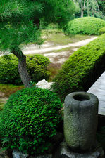 Samll water basin in Unryu-in temple's gardens
