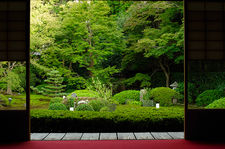 Unryu-in temple's zen garden