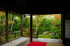 Hall with view on zen garden in autumn, Daiho-in temple