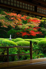 Early autumn colours from Shisen-do temple's hall