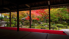 Zen garden in autumn from meditation hall, Enko-ji temple (2/4)