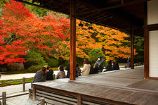 Tourists watching autumn colours in Tenju-an temple gardens