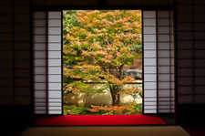 Paper sliding doors opening on zen garden, Unryu-in temple