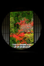 Round window of Enlightenment in autumn, Unryu-in temple