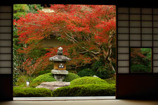 Stone lantern in zen garden with autumn colours, Unryu-in temple