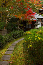 An alley in autumn, Raigo-in temple