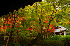Autumn foliage in Raigo-in temple grounds