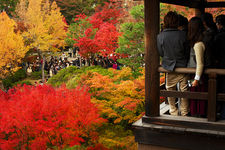 Bridge crowded with tourists enjoying autumn colours, Tofuku-ji temple