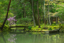 Pond with rowboat in the moss garden of Saiho-ji temple, a UNESCO World Heritage site of Kyoto, Japan