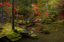 Autumn colours in the moss garden of Saiho-ji temple, a UNESCO World Heritage site of Kyoto, Japan