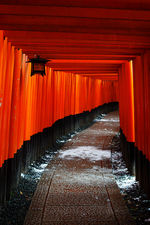 Path of the Thousand Torii in winter, Fushimi Inari shrine, Kyoto, Japan