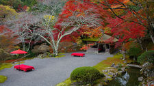 Autumn colours in Hakuryu-en garden, Kyoto, Japan