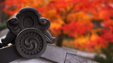 Roof tile detail with autumn colours, Shinyo-do temple, Kyoto, Japan