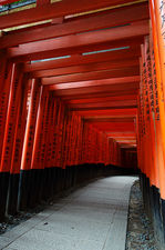 Path under red torii in Fushimi Inari shrine, Kyoto, Japan