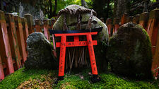 Torii votive offering in dark corner of Fushimi Inari shrine forest, Kyoto, Japan