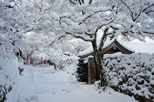 Fresh snow on Jikko-in temple entrance, Ohara valley, Kyoto