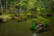 Pond in the moss garden of Saiho-ji temple, a UNESCO World Heritage site of Kyoto, Japan